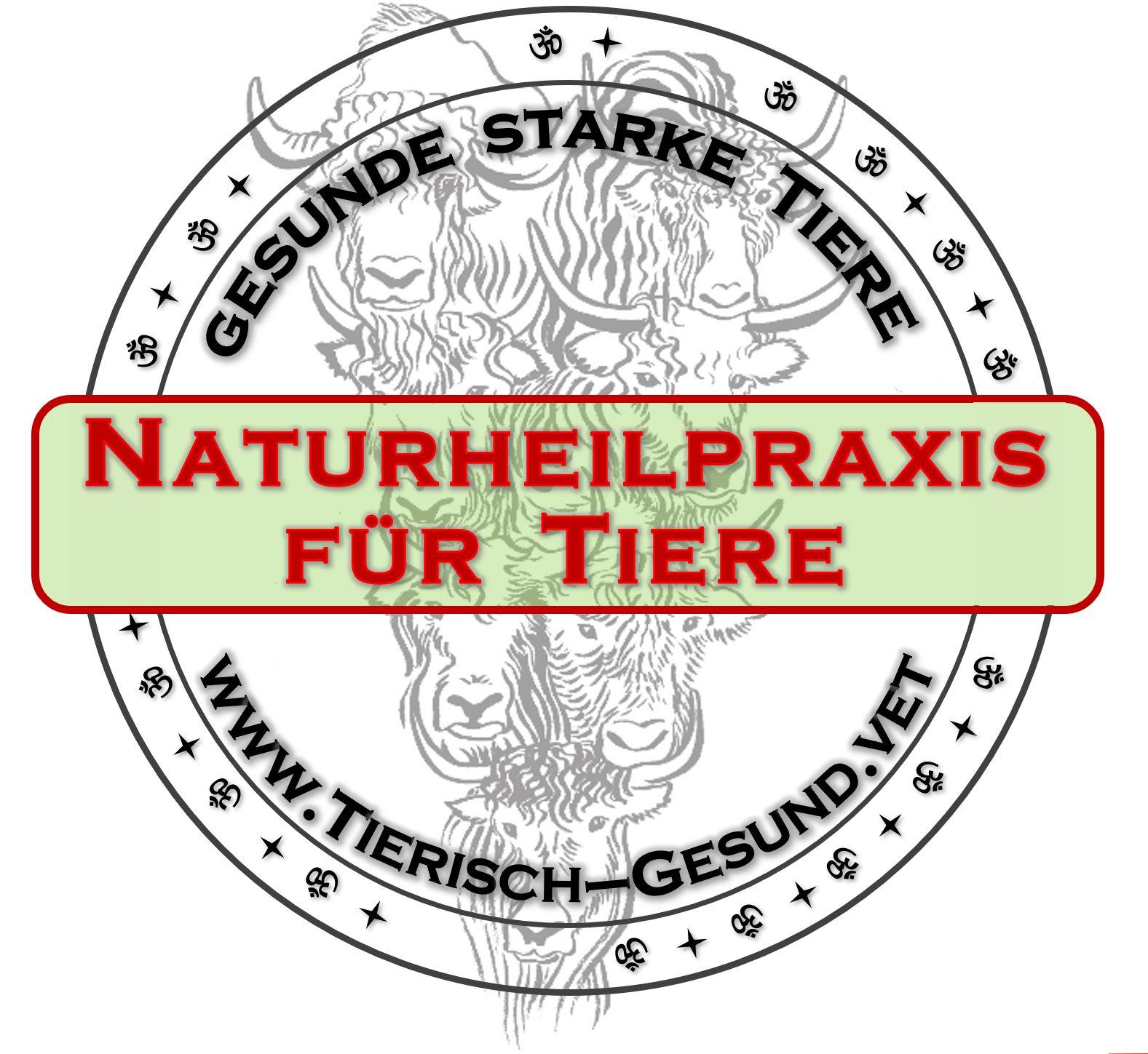 Naturheilpraxis für Tiere -mit Bioresonanz